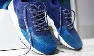BWGH for PUMA – The 'Bluefield' Project