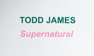 "Todd James ""Supernatural"" at Sandra Gering Gallery"