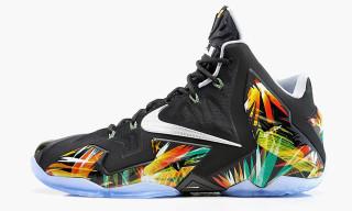 "Nike LeBron 11 ""Everglades"""