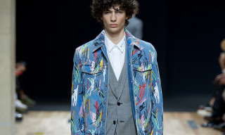 Dior Homme Spring/Summer 2015 Collection