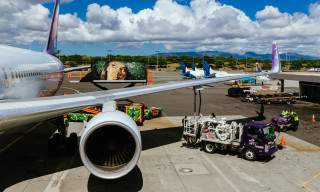 POW! WOW! and Fitted Team Up for the Hawaiian Airlines Ground Service Vehicles Project