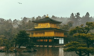 Temples and Skyscrapers: Visual Impressions of Japan through the Lens of Akhil Sesh