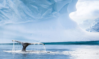 Watch Awe-Inspiring Aerial Footage of Antarctica