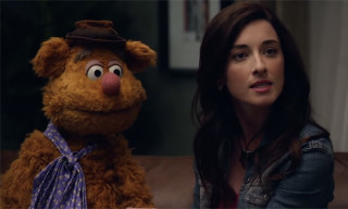 'The Muppets' for Adults Is Coming to ABC