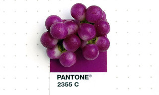 Pantone Swatches Matched With Everyday Items