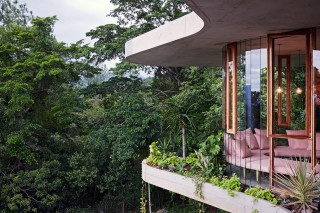 The Planchonella House by Jesse Bennett Floats Into the Rainforest