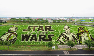 Incredible 'Star Wars' Art Display Featured in Japanese Village's Rice Paddy Field