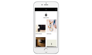 "VSCO Cam Introduces User-to-User Interaction With ""Collections"""