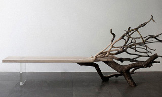 "French Designer Benjamin Graindorge's ""Fallen Tree"" Bench Is Half Branch, Half Bench"