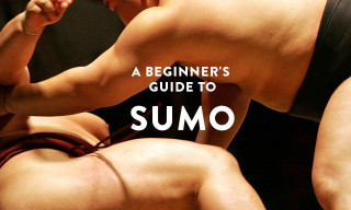A Complete Beginner's Guide to Sumo Wrestling – Part I