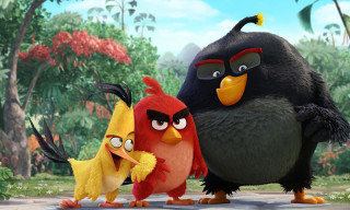 'The Angry Birds Movie' Gets Its First Official Trailer