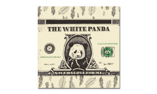 "White Panda Drops Synth-Pop Mashup of Lil Dicky & Fetty Wap's ""$ave Dat Money"""