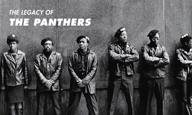 the genesis and history of the black panther in the united states Although the black panther party believes in black nationalism and black culture browse other questions tagged united-states black-history or ask your own question.