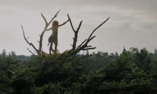Watch the Mystical Teaser for Disney's Remake of 'Pete's Dragon'