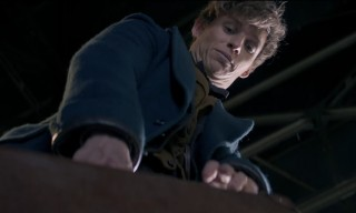 'Fantastic Beasts and Where to Find Them' Gets a New Trailer