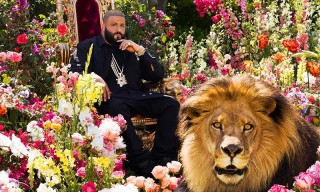 DJ Khaled Is the King of the Jungle in His 'Major Key' Album Cover