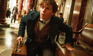 J.K Rowling's 'Fantastic Beasts and Where to Find Them' Looks at American Wizardry