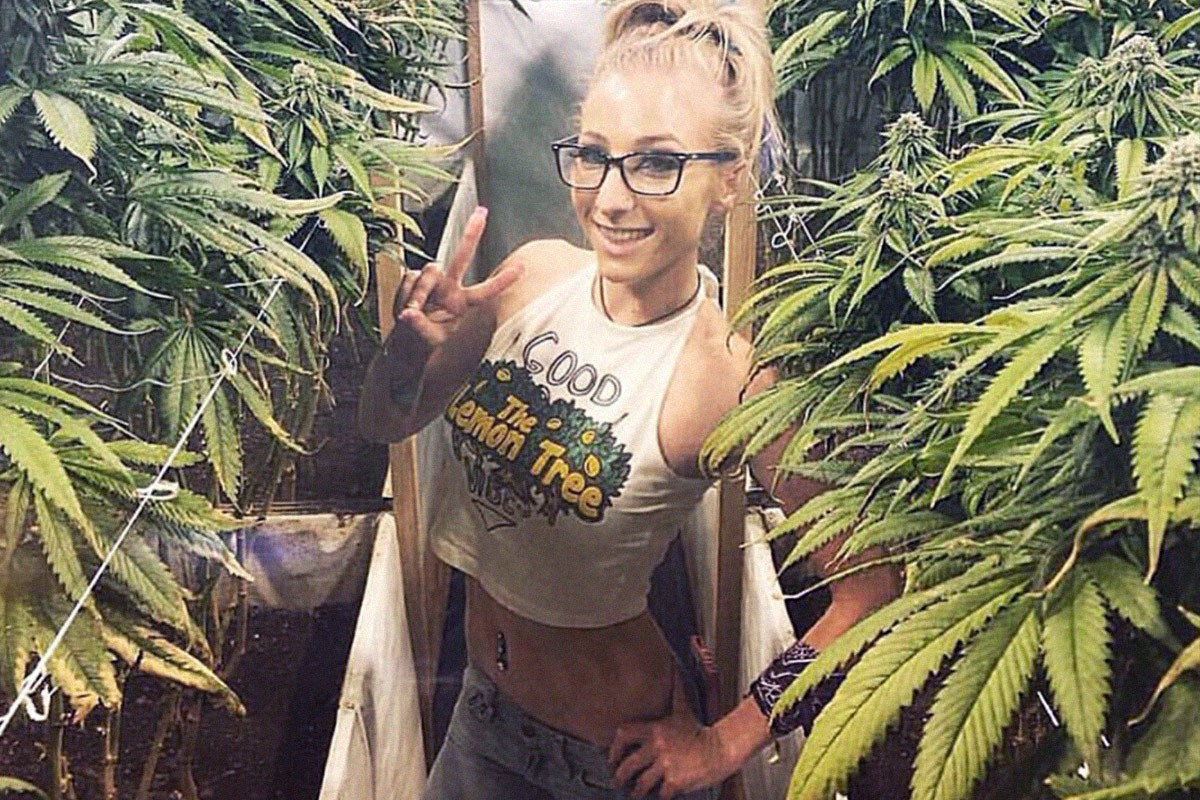 8 Best Weed Snapchat Accounts You Need To Follow Herb
