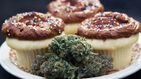 Here's How to Make the Best Weed Cupcakes
