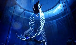 Red Bull Skydivers Dance Wearing LED Wingsuits in Incredible Visual Display