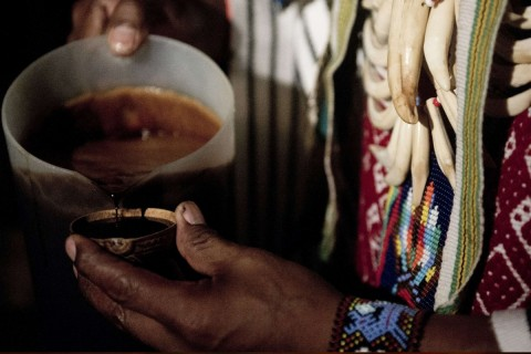 Why Ayahuasca Is a New Age Spiritual Scam