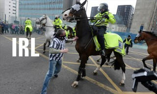 Football Fan Arrested After Throwing Burger at Police Horse & Other News