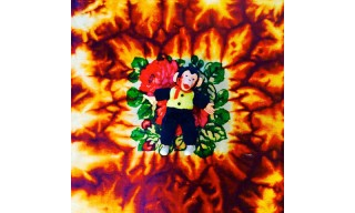 Odd Future's Hodgy Drops Debut Album 'Fireplace: TheNotTheOtherSide'