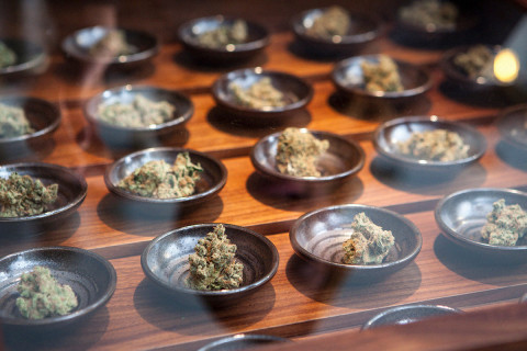 weed-business-ideas-guide-02