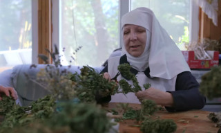 'Breaking Habits' Is a Documentary About Weed-Growing Nuns