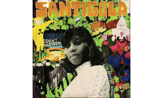 Santigold's 'I Don't Want' Is a Milestone for Dancehall Music