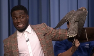 Watch Kevin Hart Freak out Over Robert Irwin's Exotic Animals