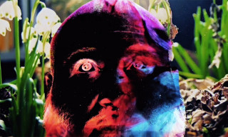 """Action Bronson Shares Trippy Video for """"White Bronco"""""""