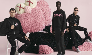 "Kim Jones' First Dior Campaign Includes a Giant KAWS ""BFF"""