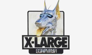 XLARGE Taps Hajime Sorayama & MEDICOM TOY for Robot-Inspired Capsule