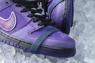 "4a1f2bc727e CONCEPTS. Previous Next. Brand  Concepts x Nike SB. Model  Dunk Low Pro ""Purple  Lobster"""