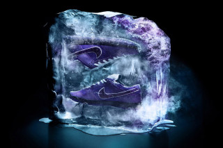 CONCEPTS x Nike SB Dunk Low Pro Purple Lobster  Where to Buy 6e82d3cba