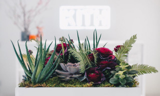 PlantShed & KITH Launch Valentine's Day Pop-Up in NYC With Sami Miro