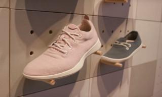 Meet Allbirds, the Sneaker Brand Co-Signed by Barack Obama