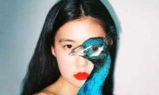 """Love, Ren Hang"" Exhibition Showcases the Late Photographer's Iconic Work (NSFW)"