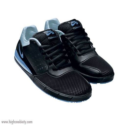 Nike Sb Air Zoom