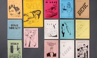 Carlos Zéfiro's Brazilian Sex Comics (comix)