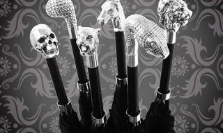 Archer Adams 2011 Umbrella Collection