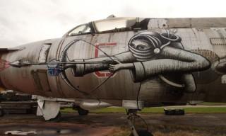 Phlegm Hits Sukhoi Su17 Jet