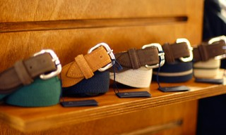 Andersons for FrenchTrotters Belts