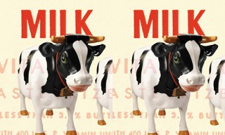 """Milk: A Local and Global History"" Book"