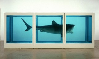 Watch | Damien Hirst on Damien Hirst at Tate Modern