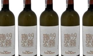 Wine | Azienda Santa Barbara – Verdicchio dei Castelli di Jesi