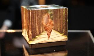 Visionaire 62 Rio – 3D Lenticular Box
