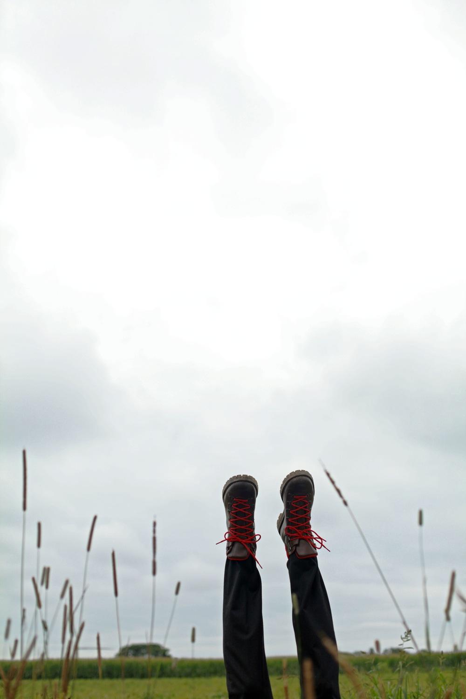 Ovadia-FW12
