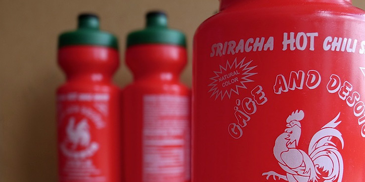 Gage + DeSoto Sriracha Water Bottle